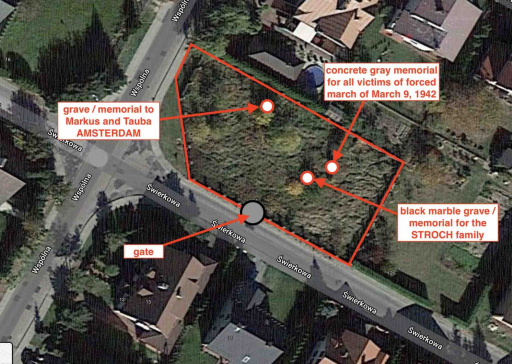 Annotated Google satellite map showing the location of the Swierkowa mass grave site in Mielec